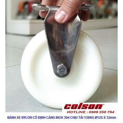 Giá Bánh Xe đẩy Hàng Inox Nhựa Nylon D125 2 5408 254 Banhxecolson.com