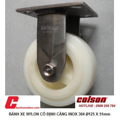 hình thực tế bánh xe đẩy caster càng inox cố định nylon d125 54111 banhxecolson.com